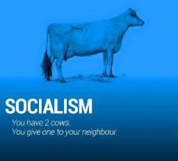 SOCIALISM You have 2 COWS. You give one to your neighbour.
