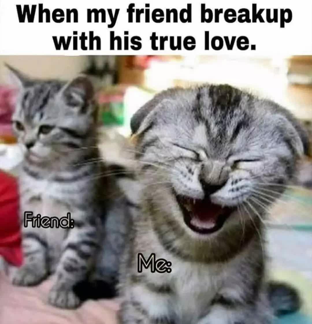When my friend breakup with his true love. Friends Me