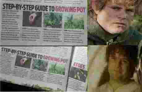 STEP-BY-STEP GUIDE TO GROWING POT STEP-BY-STEP GUIDE TO GROWING POT ATOES